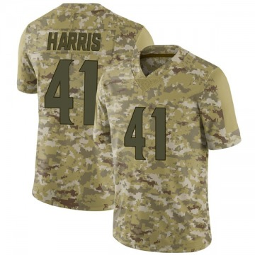 Youth Nike Minnesota Vikings Anthony Harris Camo 2018 Salute to Service Jersey - Limited
