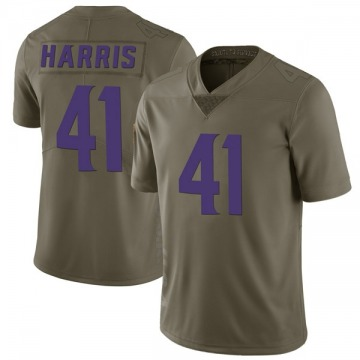 Youth Nike Minnesota Vikings Anthony Harris Green 2017 Salute to Service Jersey - Limited