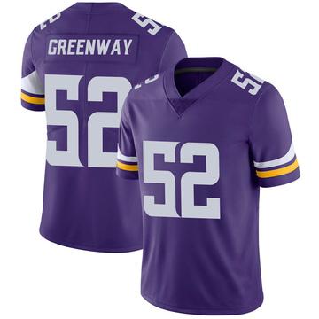 Youth Nike Minnesota Vikings Chad Greenway Purple 100th Vapor Jersey - Limited